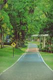 Bicycle path in Public Park Royalty Free Stock Photography