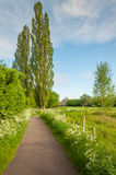 Bicycle path in a rural landscape with blooming wildflowers Royalty Free Stock Images