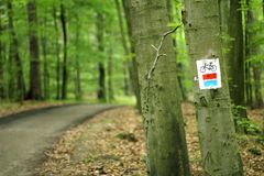 Bicycle path with sign. Bicycle path through the forest, the sign on the tree royalty free stock images