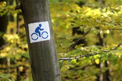 Bicycle path sign on a tree. In the forest stock photos