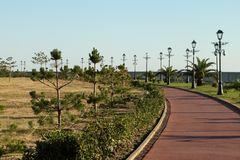 Bicycle path surrounded by tropical plants stock photography