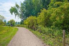 Bicycle path through a tree lined field in summer royalty free stock photography