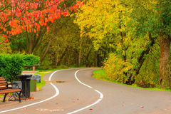 Bicycle path with turn in the park Royalty Free Stock Photography
