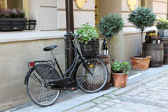 Bicycle in the paved street. Of an old town Royalty Free Stock Photography