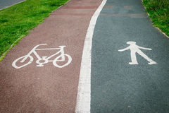 Bicycle and pedestrian sign painted on the road asphalt Stock Photography