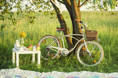 Bicycle with picnic set in summer day Royalty Free Stock Images