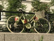 Bicycle with plant pots Stock Photography