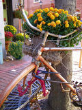 Bicycle Planter. Bicycle being used as decorative planter Stock Images