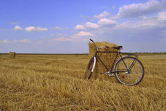 Bicycle and pokoshenny field of wheat. The bicycle stands near in the field of slanted wheat of a stack Stock Photo