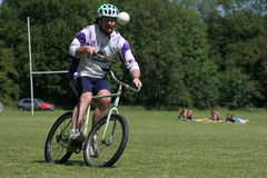 Bicycle Polo Stock Photos