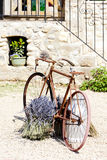 Bicycle, Provence Royalty Free Stock Images
