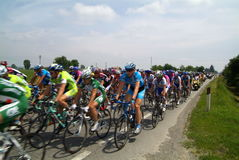 Bicycle race, group Stock Photography