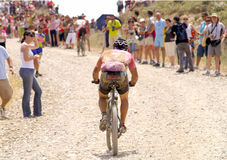 Bicycle race for the semi-desert of The Bardenas Stock Image