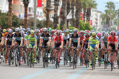Bicycle racing. Royalty Free Stock Images