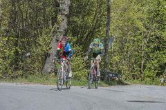 Bicycle racing, road - race Royalty Free Stock Photos