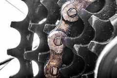 Bicycle rear sprockets close-up. Stock Images