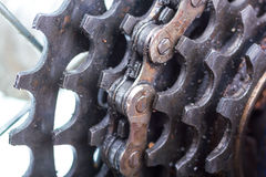 Bicycle rear sprockets close-up. Stock Photography