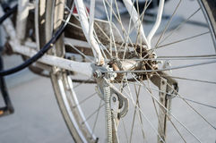 Bicycle Rear Wheel Royalty Free Stock Image
