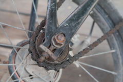 Bicycle rear wheel and drive chain closeup.  Stock Photo