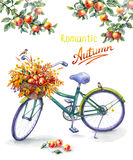 Bicycle with red apples basket Royalty Free Stock Photography