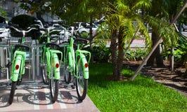 Bicycle Rental Stock Photos