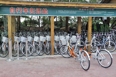 Bicycle rental place Royalty Free Stock Photography