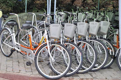 Bicycle rental place Stock Image