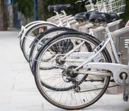 Bicycle rental service Stock Photo