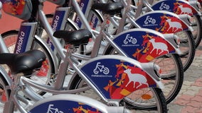 Bicycle for renting Royalty Free Stock Photography