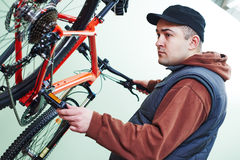 Bicycle repair or adjustment Royalty Free Stock Photos
