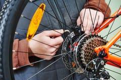 Bicycle repair or adjustment Stock Image