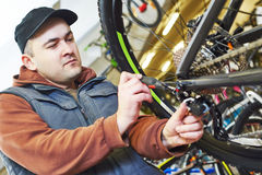 Bicycle repair or adjustment Stock Photography