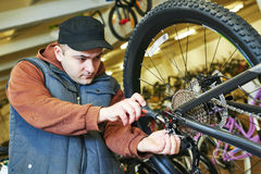 Bicycle repair or adjustment Royalty Free Stock Photography