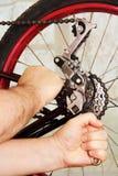 Bicycle repair. Stock Photography