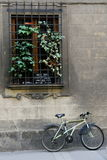 The bicycle rests against the building. Street scene in Rome, Italy with a retro bicycle Royalty Free Stock Photography