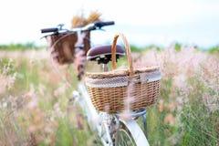 Bicycle retro com piquenique da cesta e guitarra das flores no prado Fotos de Stock