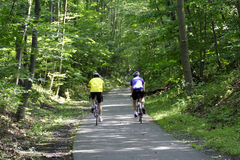 Bicycle Riders. Two bicycle riders on paved trailway in woodland setting Royalty Free Stock Photography