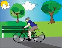 bicycle riding парка ванты Стоковая Фотография