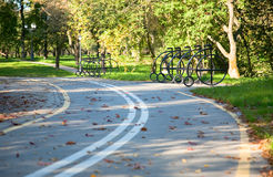 Bicycle road. In the green autumn park Royalty Free Stock Photo