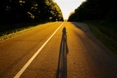Bicycle on the road. Shadow of lonely bicyclist on road lit by evening light. Outdoor adventure background Stock Photography