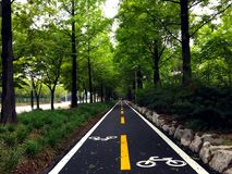 Bike Lanes Signs. Bicycle road, beautiful cityscape, clean streets, road markingsn royalty free stock photo