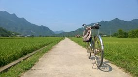Bicycle on the road in Mai Chau, Vietnam. As we were touring Mai Chau Valley we thought the bicycle on the long, straight road between the rice fields would make stock images