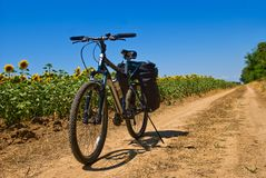 Bicycle on a rural road. Bicycle stay on a rural road stock photos
