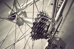 Bicycle's rear wheel Royalty Free Stock Photo