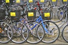 Bicycle shop royalty free stock image