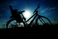 Bicycle silhouette. In summer sunset royalty free stock image
