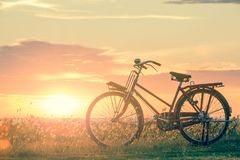 Bicycle silhouette. At the sunset or sunrise royalty free stock images