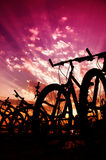 Bicycle silhouettes Royalty Free Stock Images
