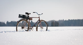 Bicycle in snow. Abandoned bicycle in the snow royalty free stock photo