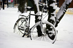 Bicycle in Snow Stock Photos